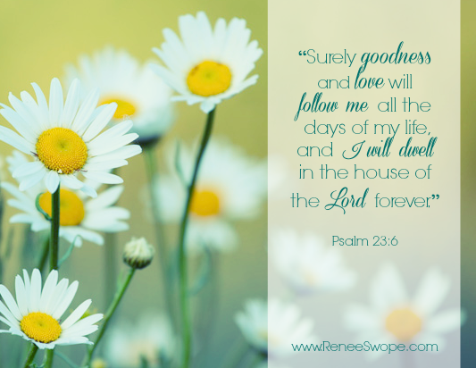 Goodness&Mercy