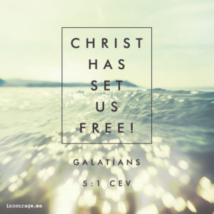 Gal_FREE